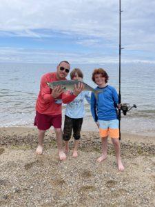 bluefish fishing MA